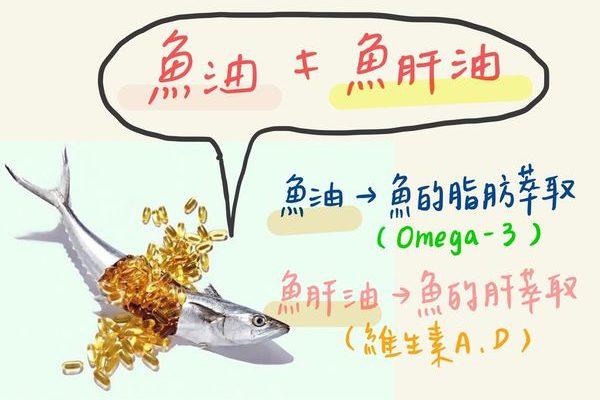 超夯魚油百百種,到底要怎麼選?跟魚肝油一樣嗎?