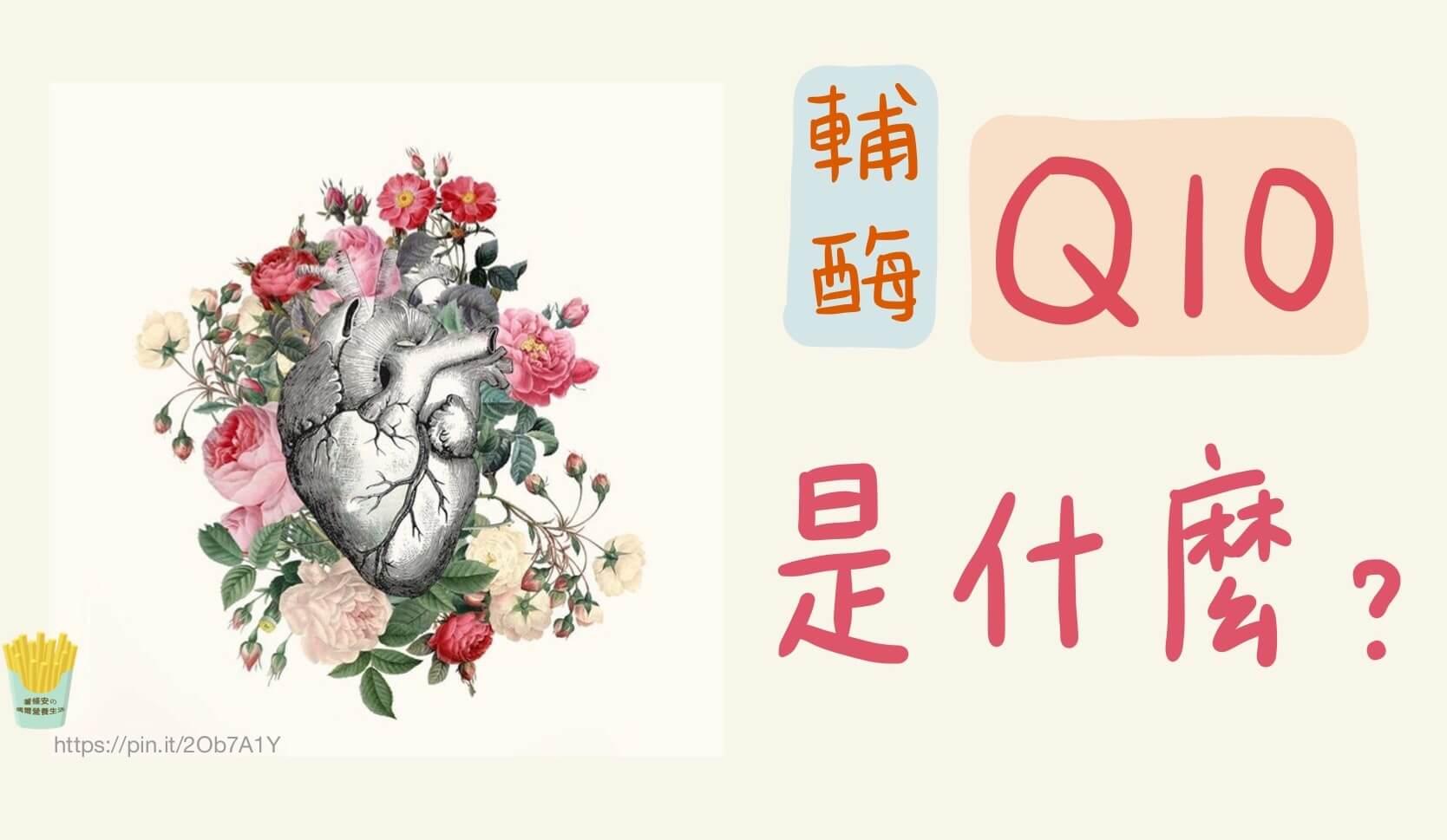 Q10是什麼